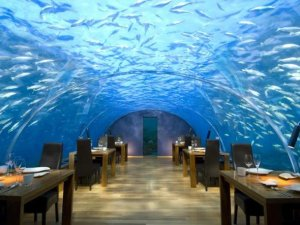 theres-also-an-amazing-underwater-restaurant-at-the-conrad-maldives-rangali-island-resort-and-spa